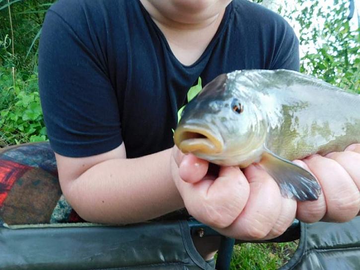 během odpoledne mi Svatý Petr dopřáldvě opravdu krásné ryby 15+ a 18+
