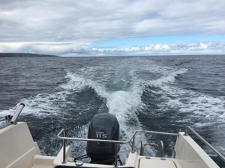 Po úmorné 24 hodin trvající cestě na poloostrov Loppa do osady Bergsfjord jsme se konečně dostali na moře. Na první zástřel to nebylo špatné, 3 tresky obecné.