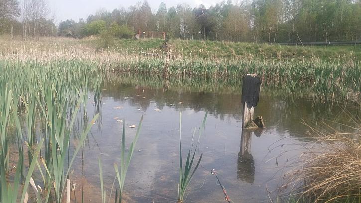 Posílám fotky z pár z mých rybaček a závodů. Hlavně když je u vody pohoda a super parta kámošů!