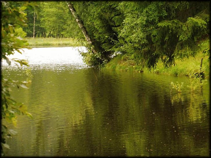 První červencový týden jsem se rozhodl strávit na 7 ha přehradě na západě Čech, nedaleko města Aše.