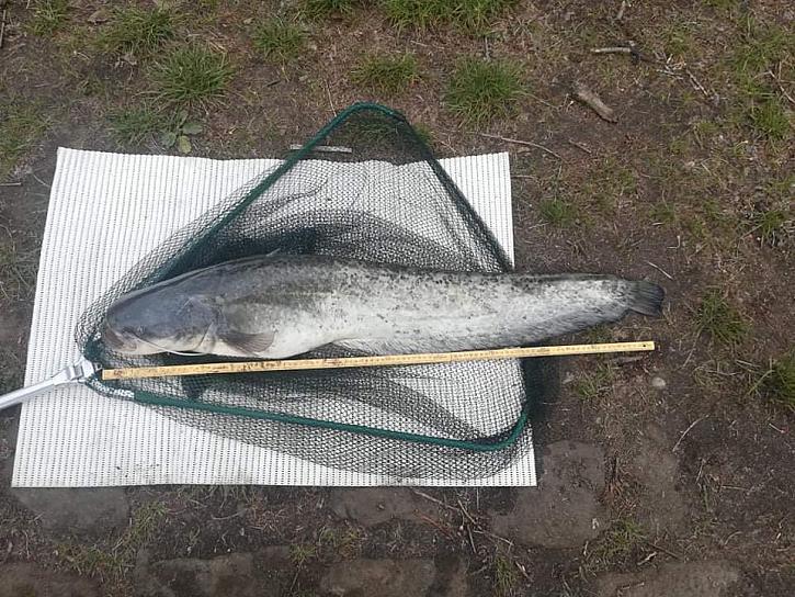 Pavel učí svou přítelkyni druhým rokem rybařit.