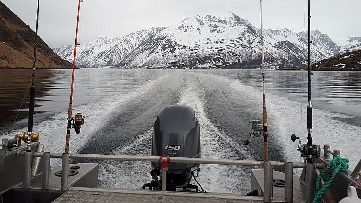 Láďa nám z Norska poslal pár aktuálních fotek z místa, kde budeme v červnu bydlet. Rybařit. Asi tam bude zima.