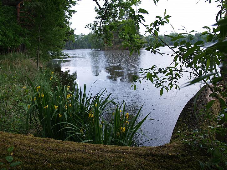 Tak se jen tak koukám, jak je ta naše příroda krásná!
